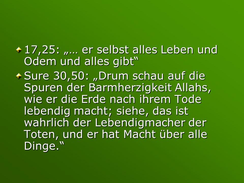 """17,25: """"… er selbst alles Leben und Odem und alles gibt"""