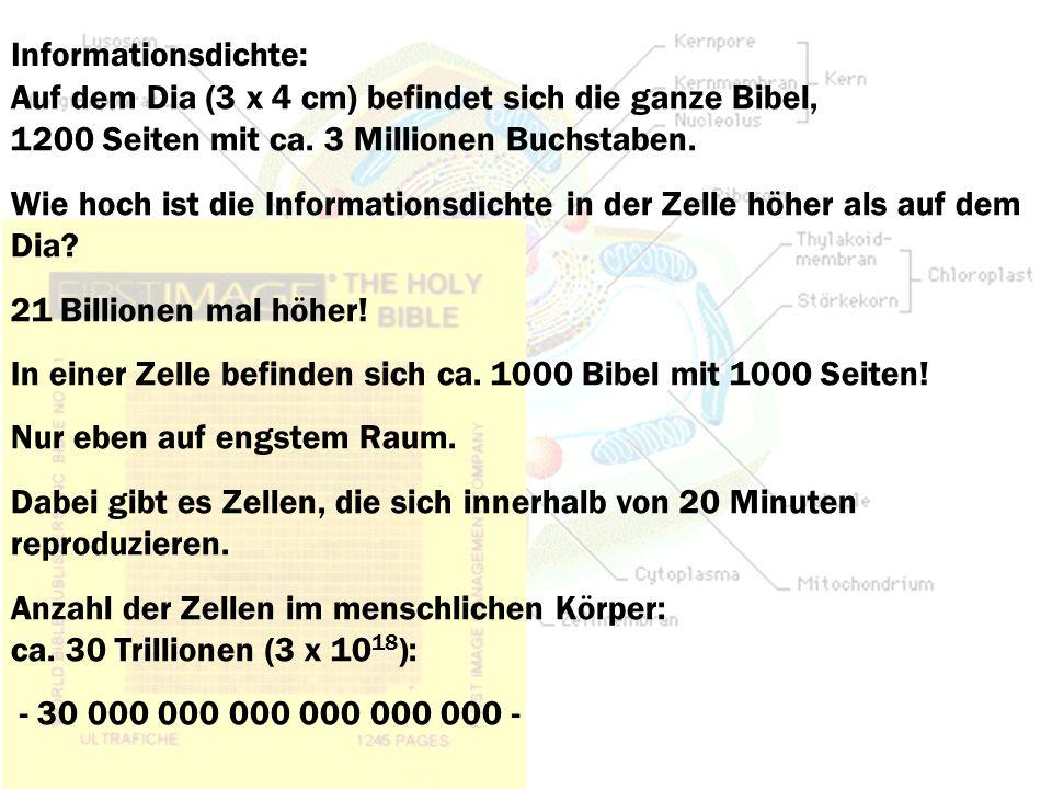 Informationsdichte: Auf dem Dia (3 x 4 cm) befindet sich die ganze Bibel, 1200 Seiten mit ca. 3 Millionen Buchstaben.