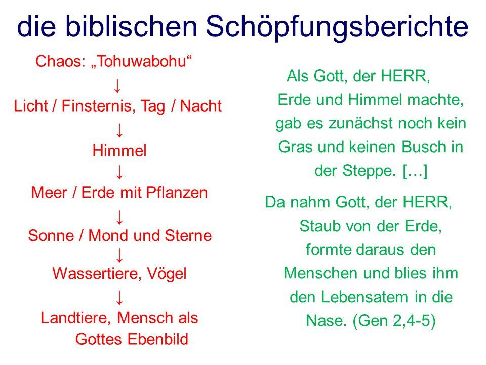 die biblischen Schöpfungsberichte