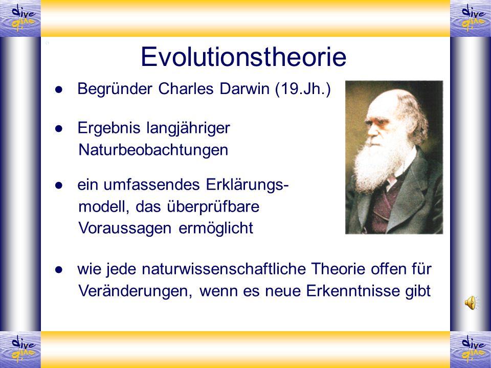 Evolutionstheorie ● Begründer Charles Darwin (19.Jh.)