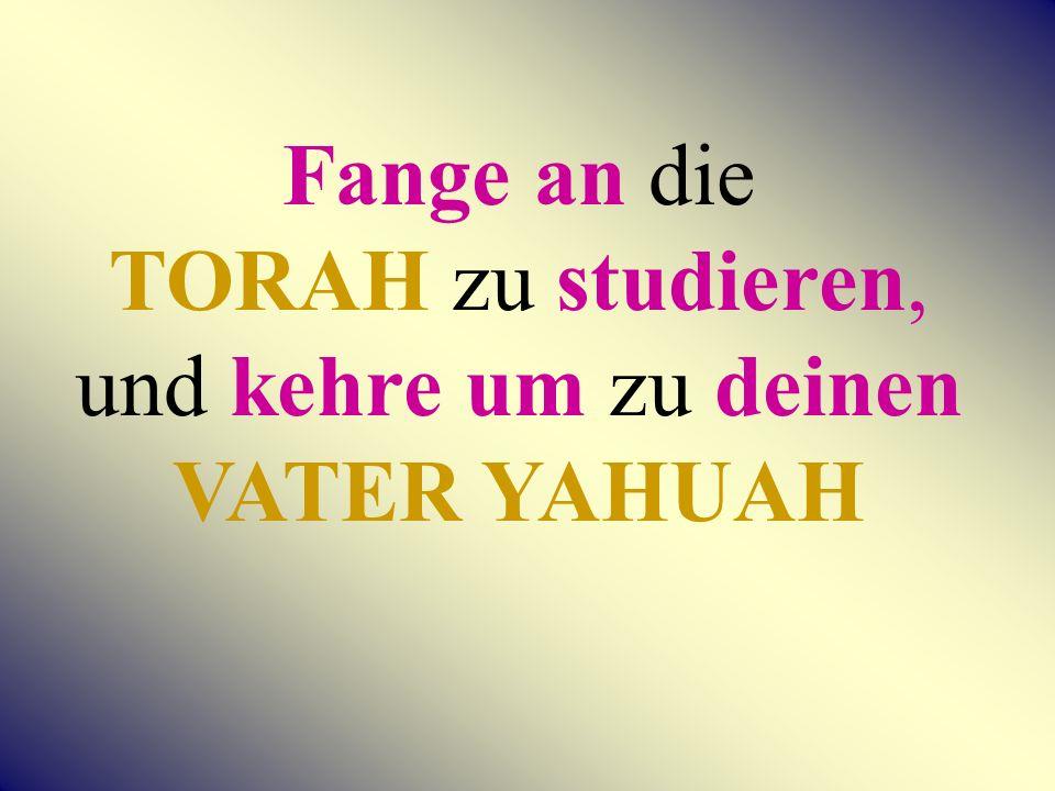 Fange an die TORAH zu studieren, und kehre um zu deinen VATER YAHUAH