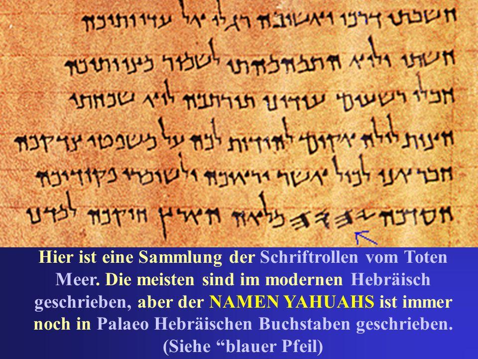 Hier ist eine Sammlung der Schriftrollen vom Toten Meer