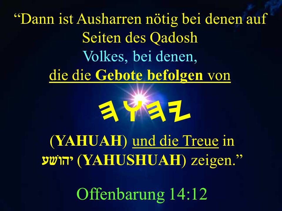 Dann ist Ausharren nötig bei denen auf Seiten des Qadosh Volkes, bei denen, die die Gebote befolgen von