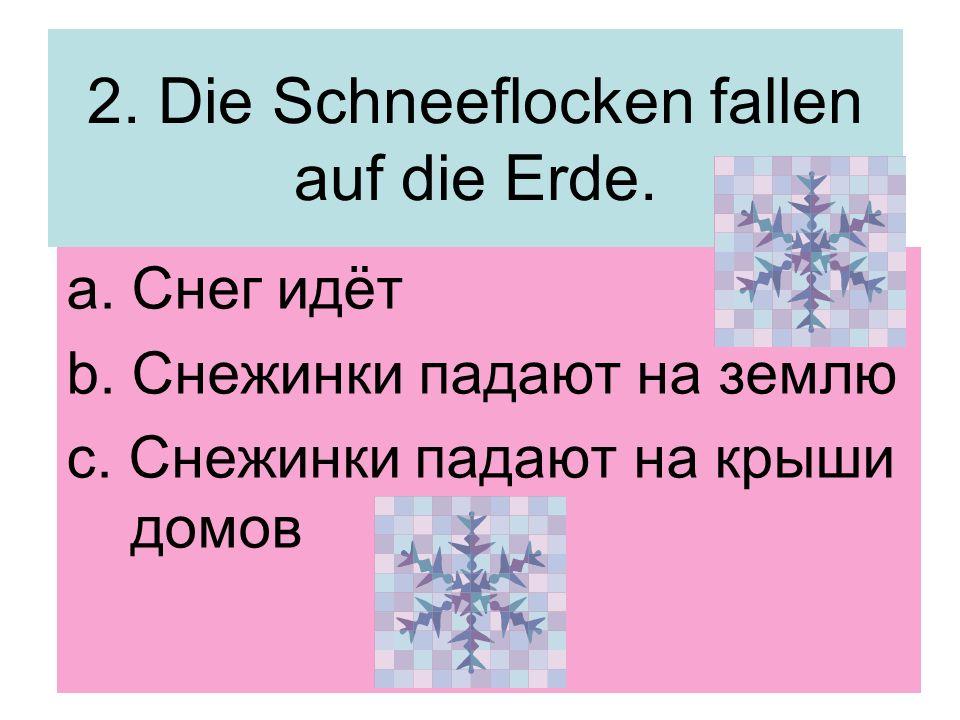 2. Die Schneeflocken fallen auf die Erde.