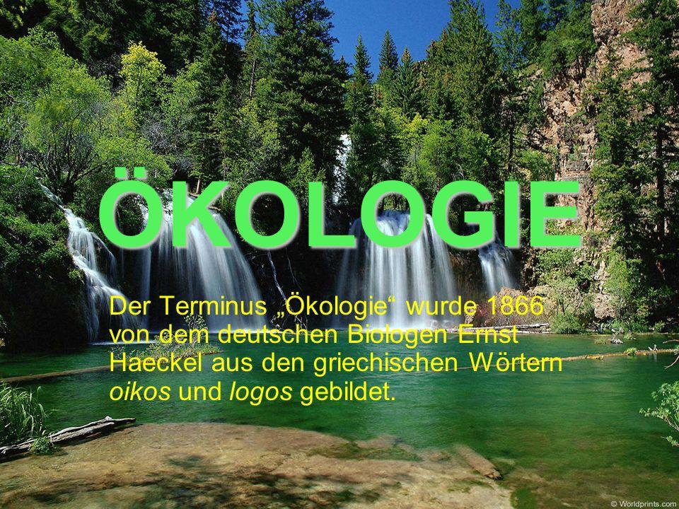 """ÖKOLOGIE Der Terminus """"Ökologie wurde 1866 von dem deutschen Biologen Ernst Haeckel aus den griechischen Wörtern oikos und logos gebildet."""