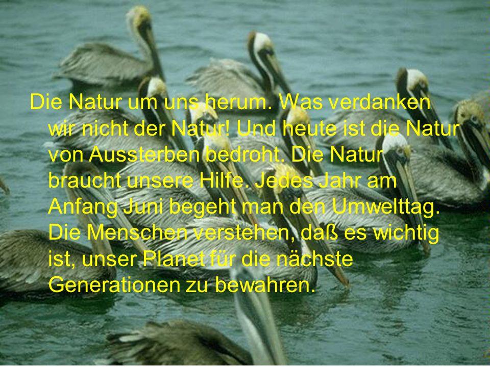 Die Natur um uns herum. Was verdanken wir nicht der Natur