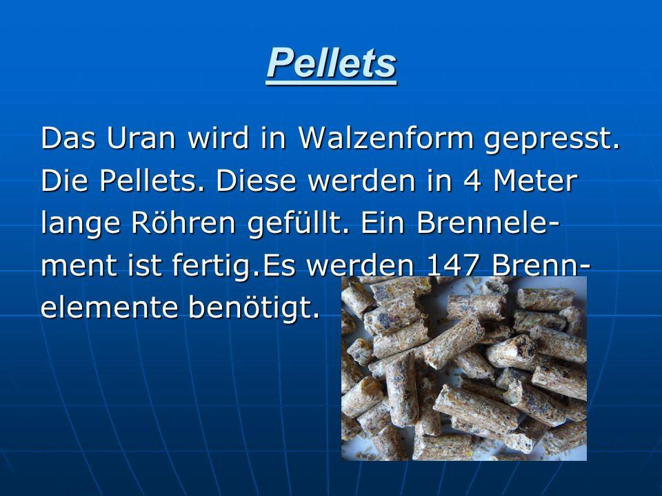 Pellets Das Uran wird in Walzenform gepresst.