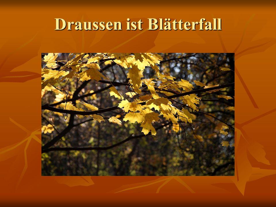 Draussen ist Blätterfall