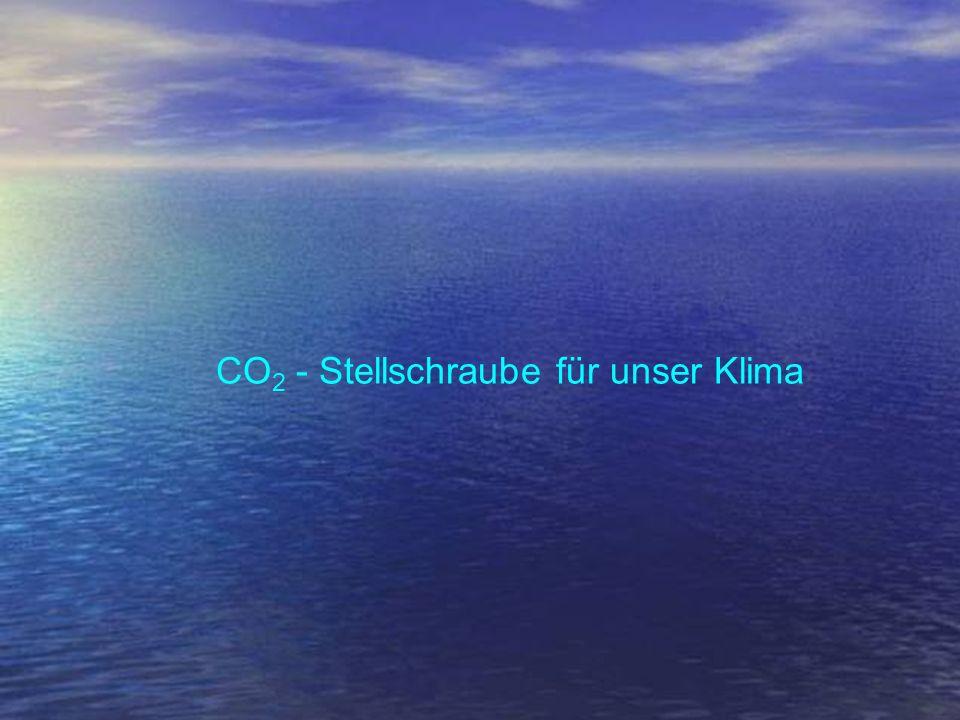 CO2 - Stellschraube für unser Klima