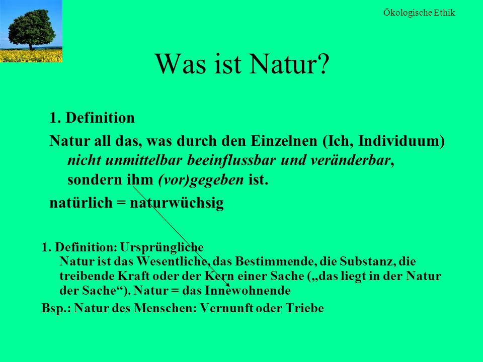 Was ist Natur 1. Definition