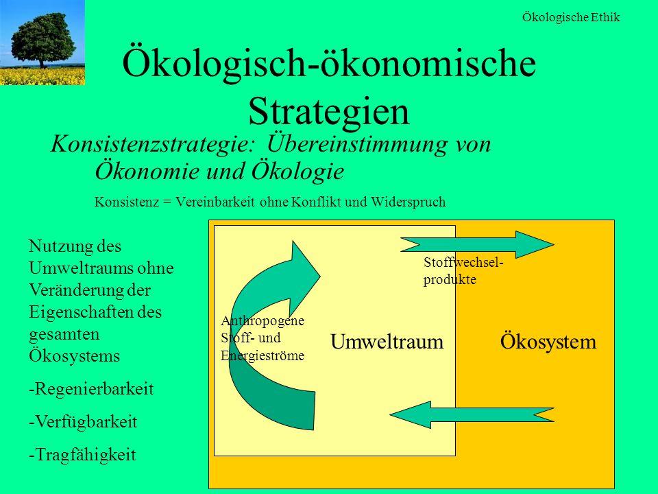 Ökologisch-ökonomische Strategien