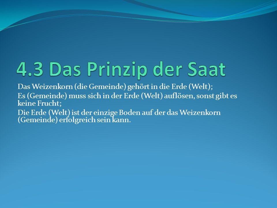4.3 Das Prinzip der Saat Das Weizenkorn (die Gemeinde) gehört in die Erde (Welt);