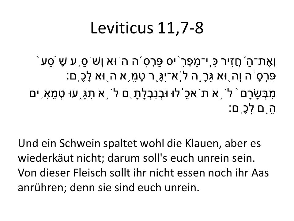 Leviticus 11,7-8