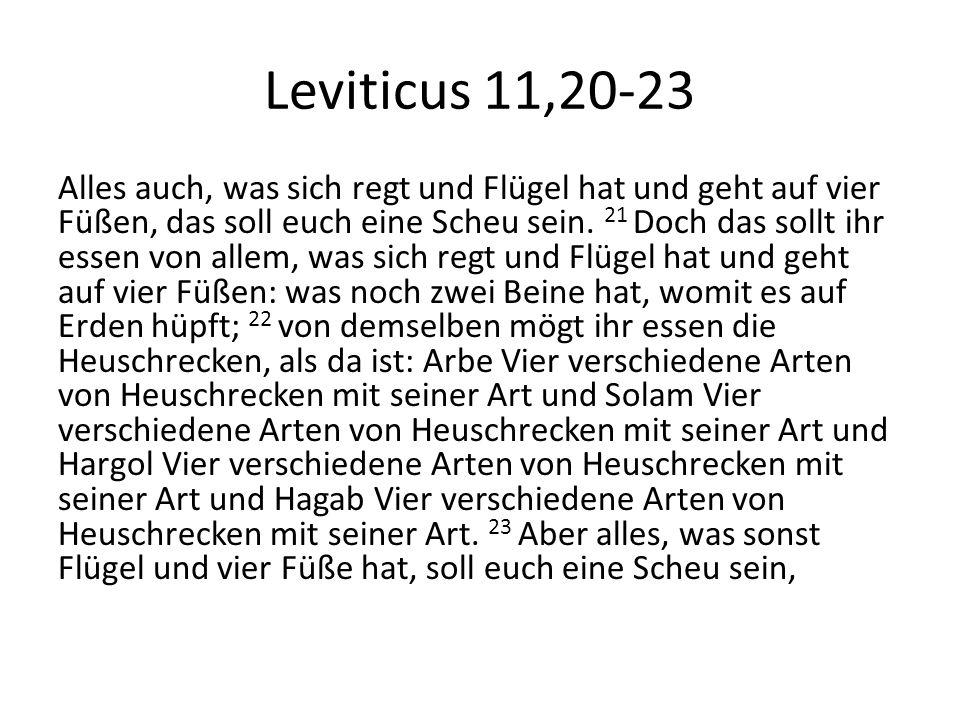 Leviticus 11,20-23