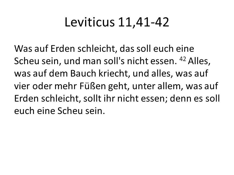 Leviticus 11,41-42