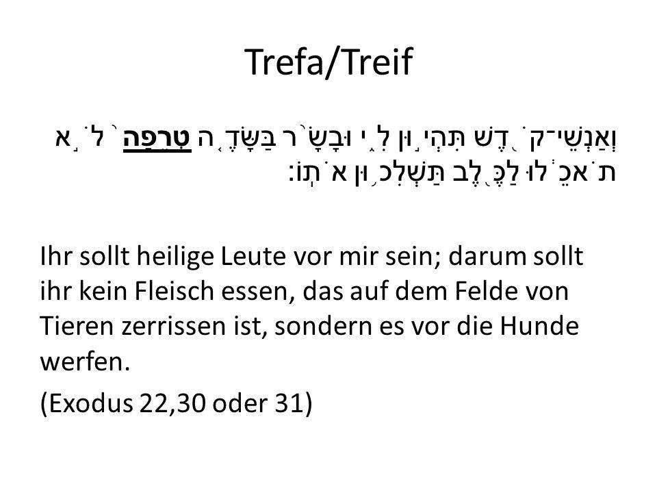 Trefa/Treif