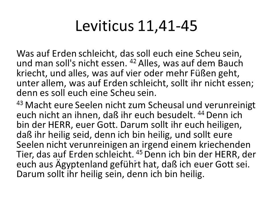 Leviticus 11,41-45