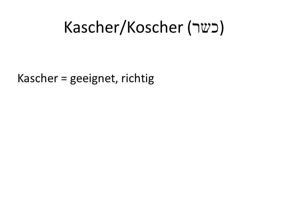 Kascher/Koscher (כשר)