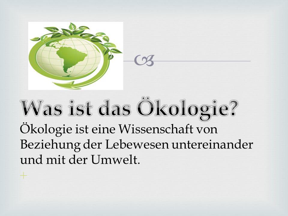 Was ist das Ökologie.