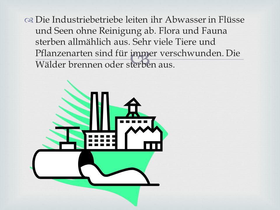 Die Industriebetriebe leiten ihr Abwasser in Flüsse und Seen ohne Reinigung ab.