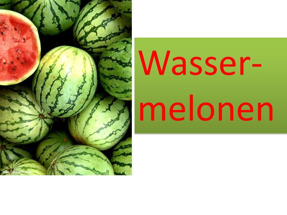 Wasser-melonen