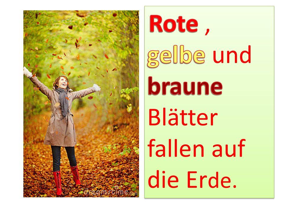 Rote , gelbe und braune Blätter fallen auf die Erde.