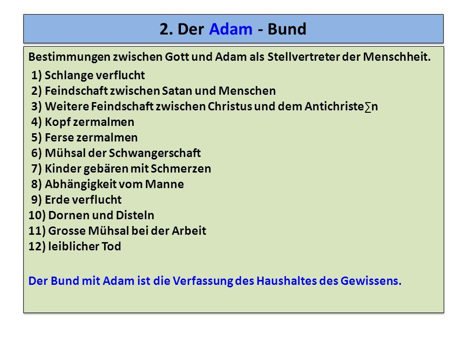 2. Der Adam - Bund