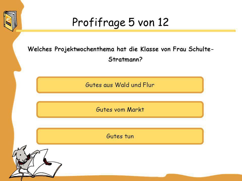 Welches Projektwochenthema hat die Klasse von Frau Schulte-Stratmann