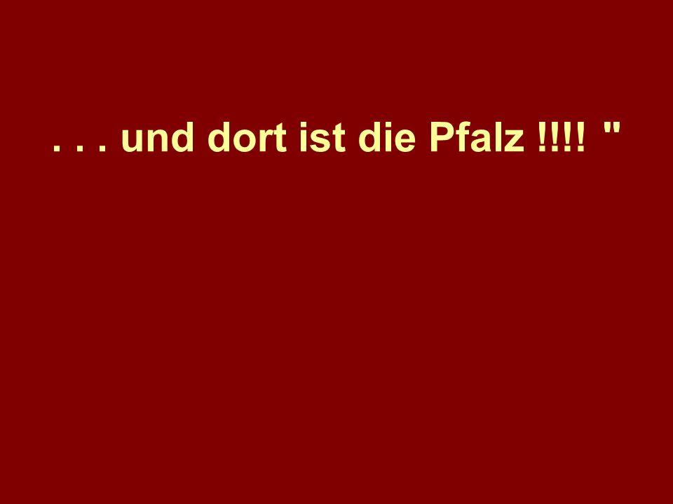. . . und dort ist die Pfalz !!!!