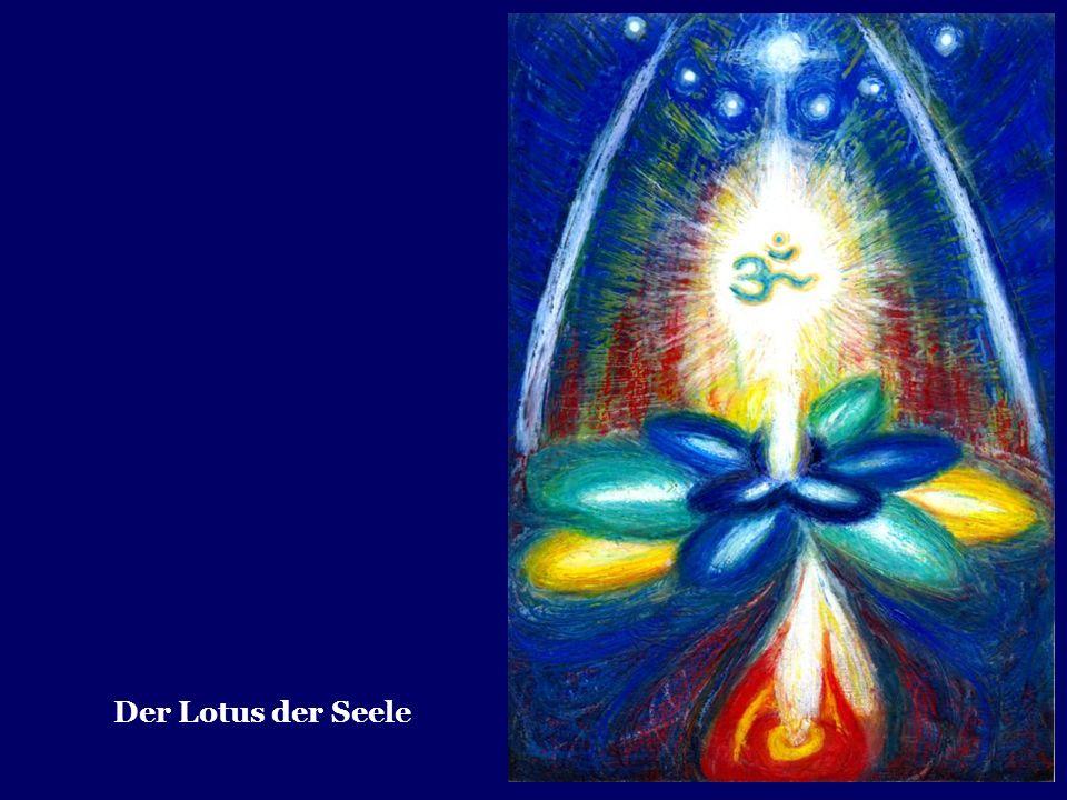 Der Lotus der Seele