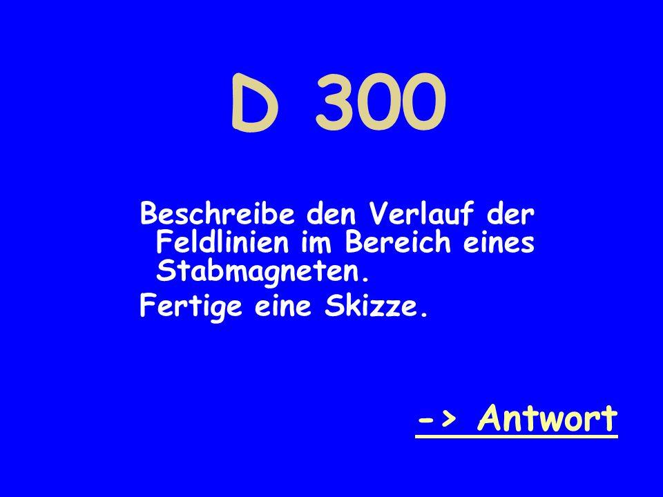 D 300 Beschreibe den Verlauf der Feldlinien im Bereich eines Stabmagneten.