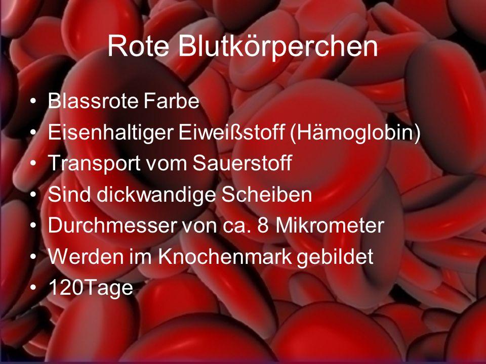 Rote Blutkörperchen Blassrote Farbe