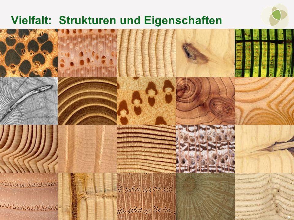 Vielfalt: Strukturen und Eigenschaften