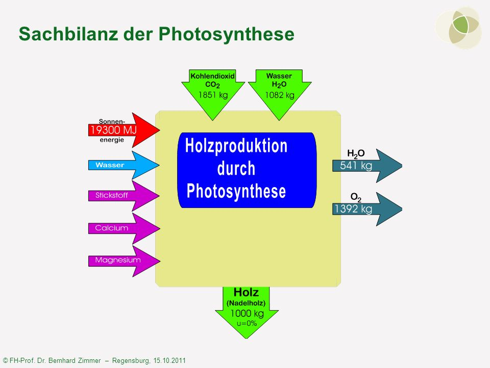 Sachbilanz der Photosynthese
