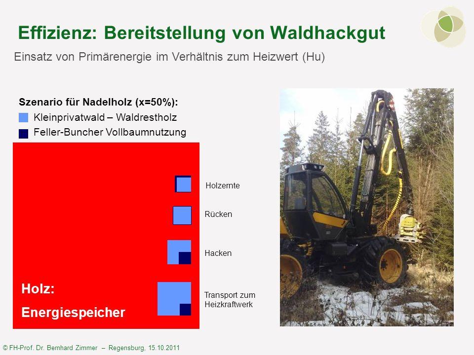 Effizienz: Bereitstellung von Waldhackgut