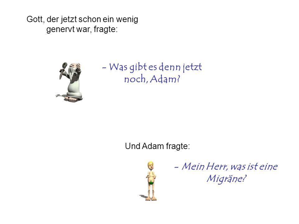 - Was gibt es denn jetzt noch, Adam