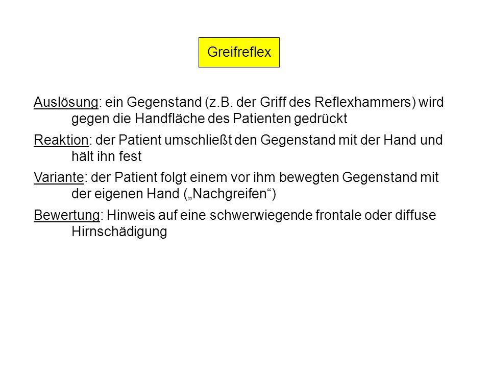 Greifreflex Auslösung: ein Gegenstand (z.B. der Griff des Reflexhammers) wird. gegen die Handfläche des Patienten gedrückt.