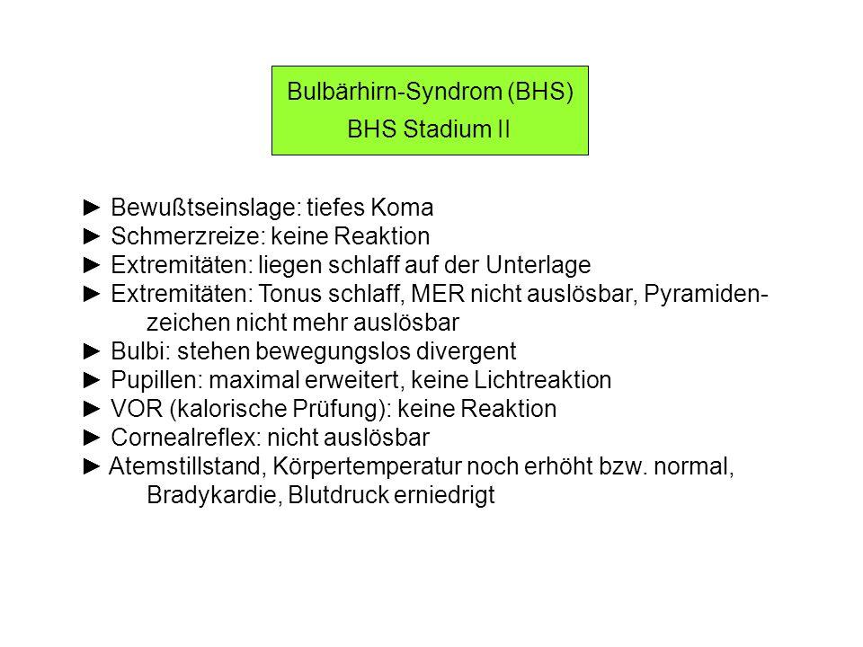 Bulbärhirn-Syndrom (BHS)
