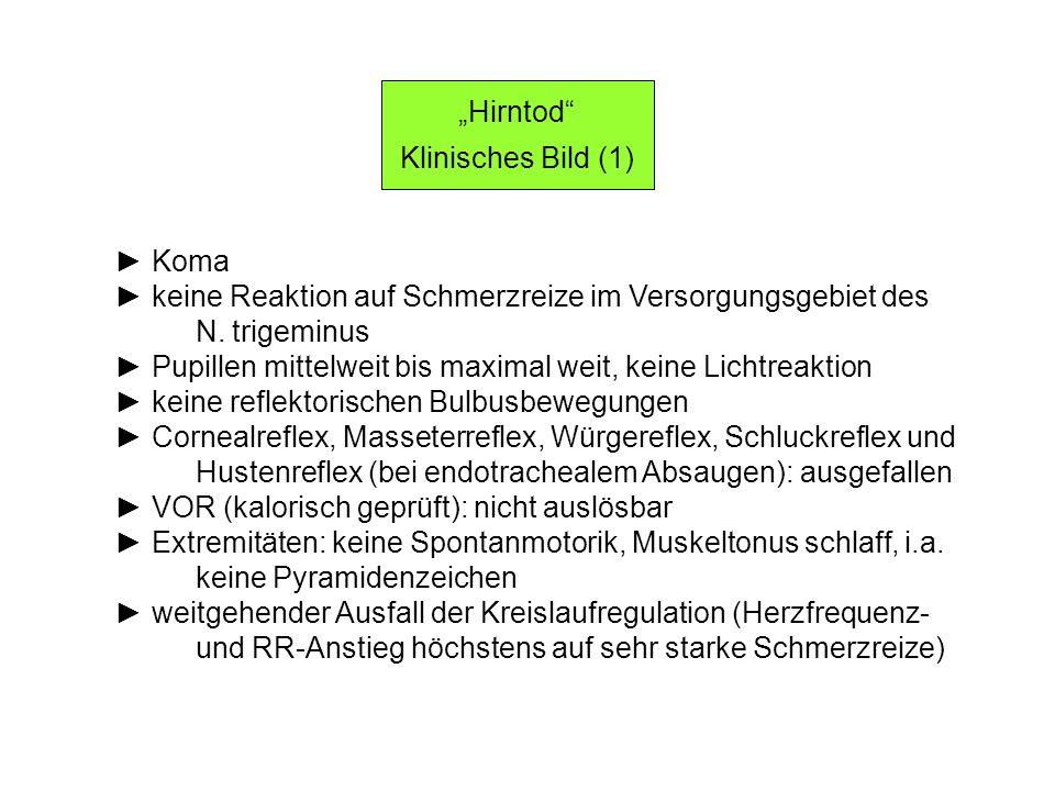 """""""Hirntod Klinisches Bild (1) ► Koma. ► keine Reaktion auf Schmerzreize im Versorgungsgebiet des."""