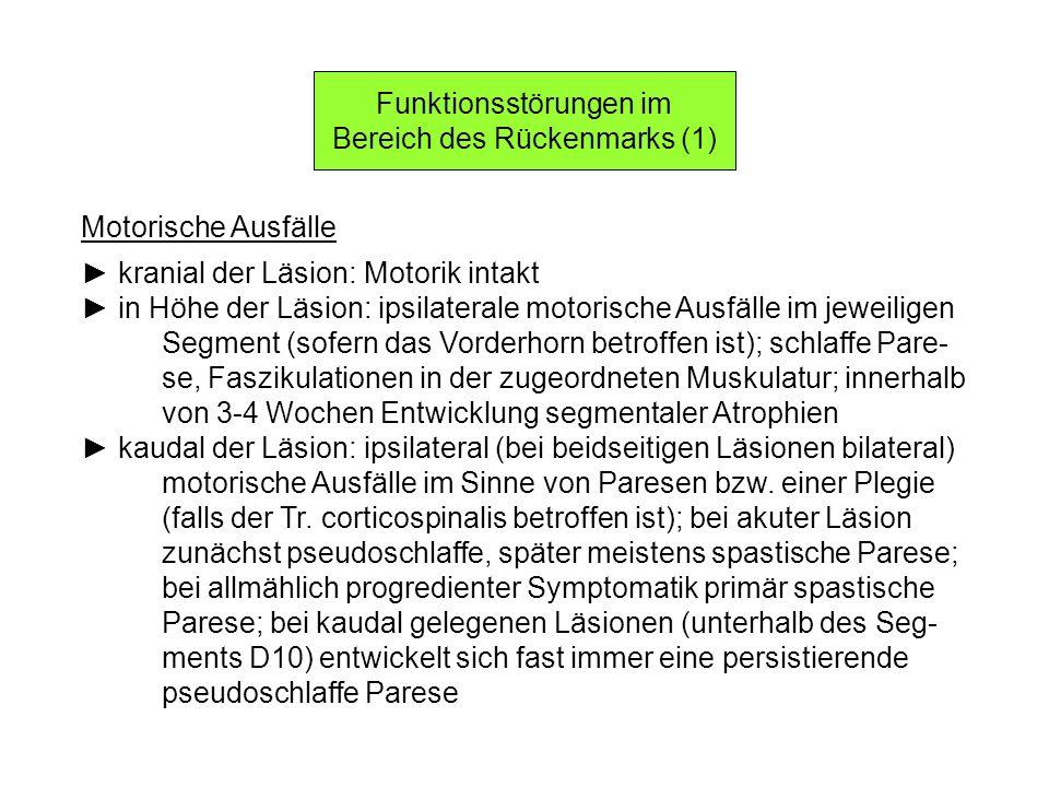 Funktionsstörungen im Bereich des Rückenmarks (1)