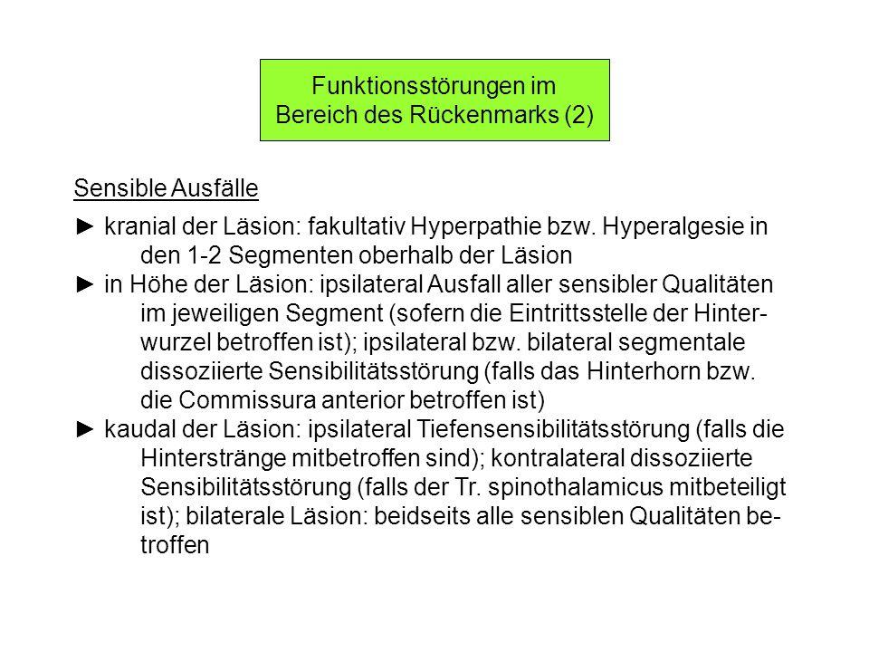 Funktionsstörungen im Bereich des Rückenmarks (2)