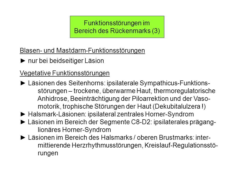 Funktionsstörungen im Bereich des Rückenmarks (3)
