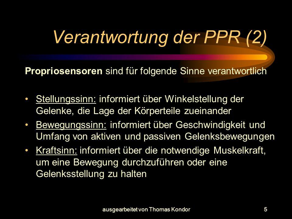 Verantwortung der PPR (2)