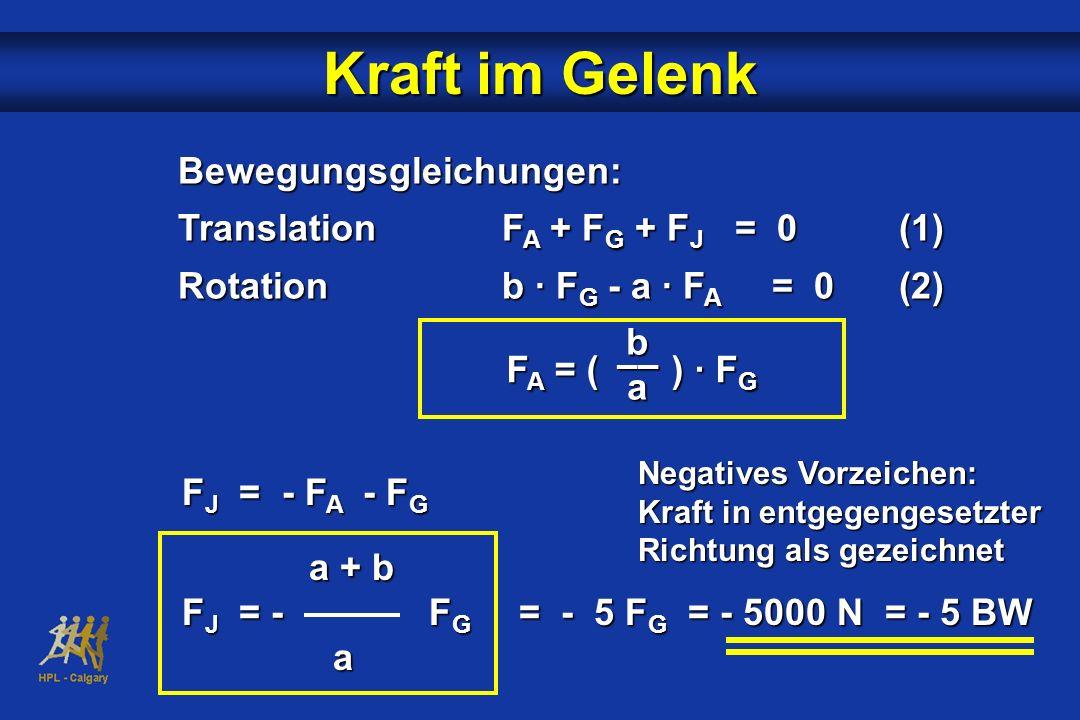 Kraft im Gelenk Bewegungsgleichungen: Translation FA + FG + FJ = 0 (1)