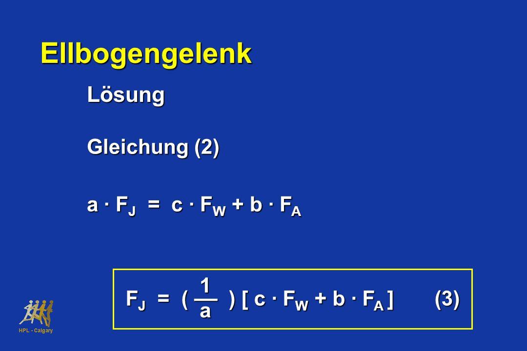 Ellbogengelenk Lösung Gleichung (2) a · FJ = c · FW + b · FA