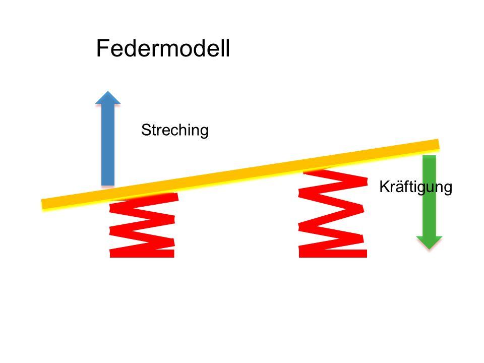 Federmodell Streching Kräftigung