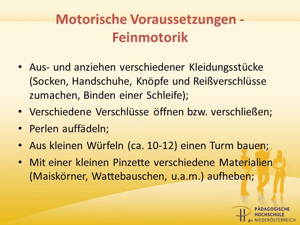 Motorische Voraussetzungen - Feinmotorik
