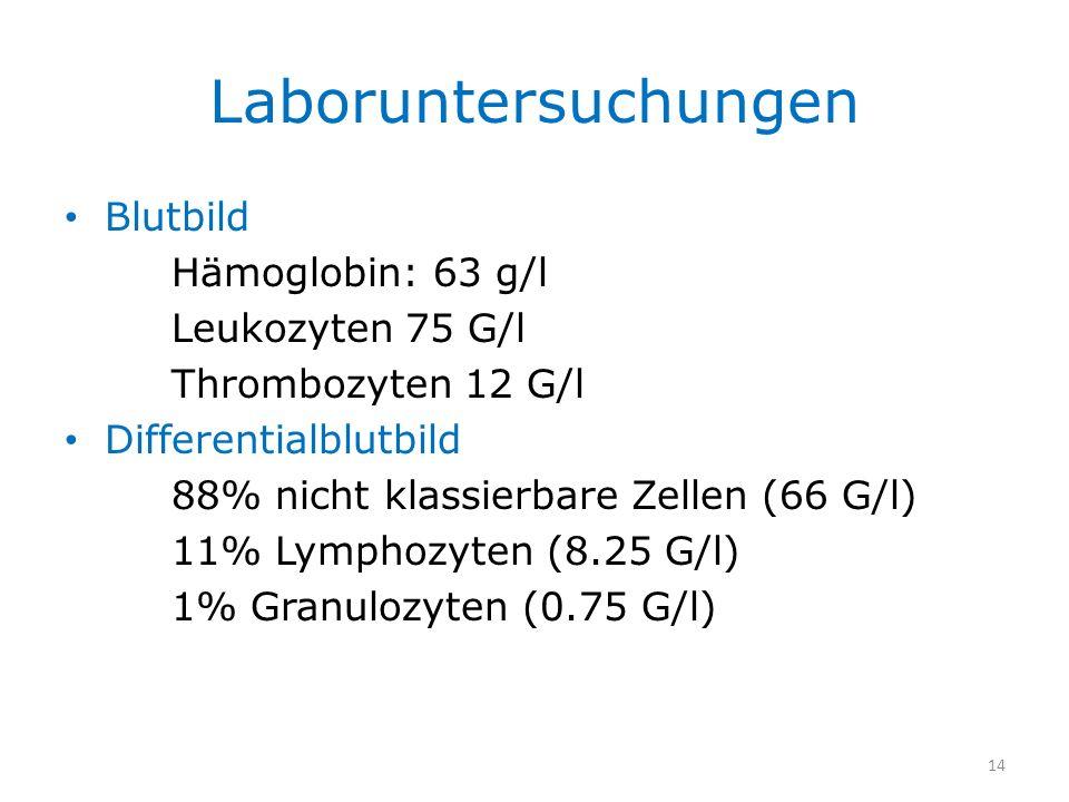 Laboruntersuchungen Blutbild Hämoglobin: 63 g/l Leukozyten 75 G/l