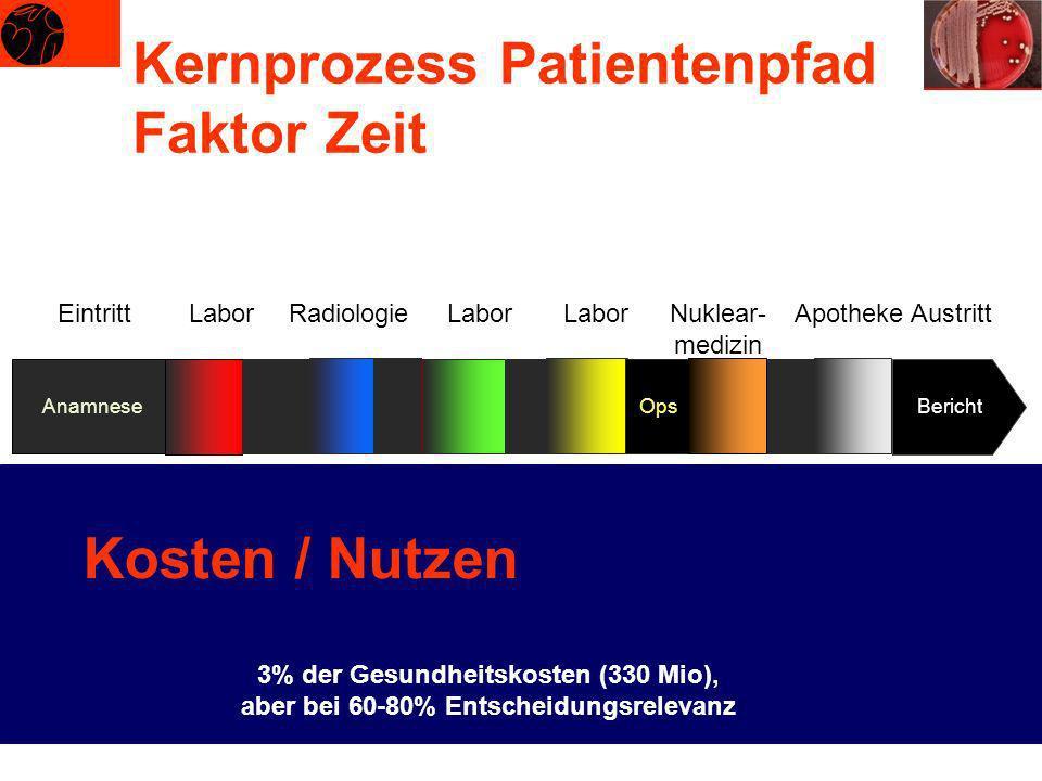 Kernprozess Patientenpfad Faktor Zeit