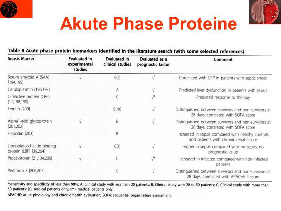 Akute Phase Proteine